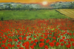 Tuscan-Sunset-over-Cornfield-and-Poppies