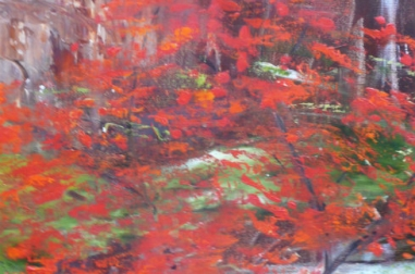 Red Maples II